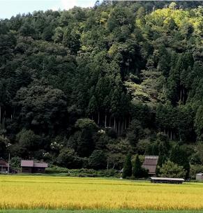 Miyama. Prefectura Kioto.